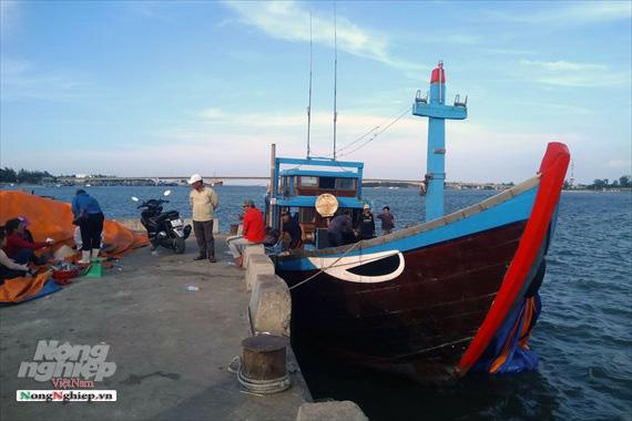 Lao đao làng nghề hấp cá xuất khẩu - Ảnh 11.