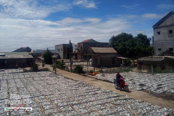 Lao đao làng nghề hấp cá xuất khẩu - Ảnh 8.