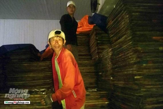 Lao đao làng nghề hấp cá xuất khẩu - Ảnh 9.