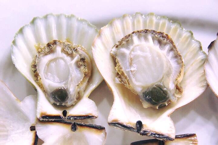 Loài điệp seo tỉnh Khánh Hòa vừa nhân giống, bán đắt như tôm hùm - Ảnh 3.