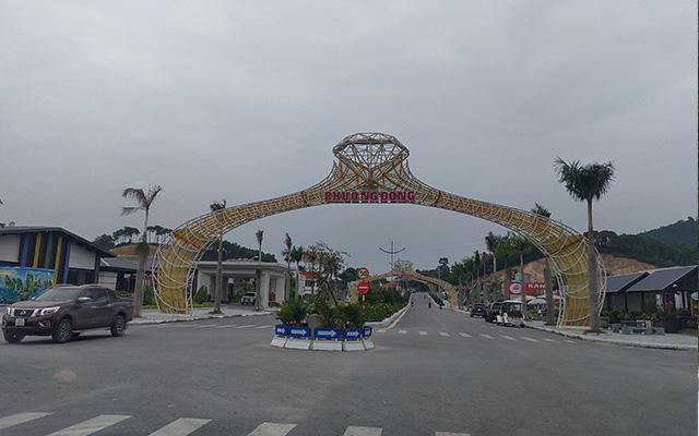 Khu đô thị Phương Đông Vân Đồn phải trồng keo phủ đất vì vắng dân