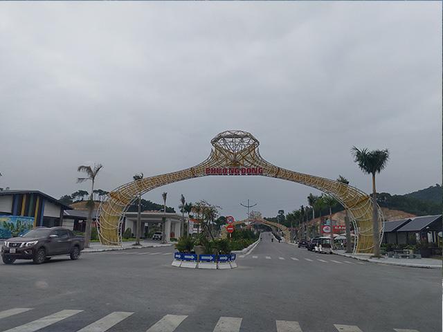 Khu đô thị Phương Đông Vân Đồn phải trồng keo phủ đất vì vắng dân - Ảnh 18.