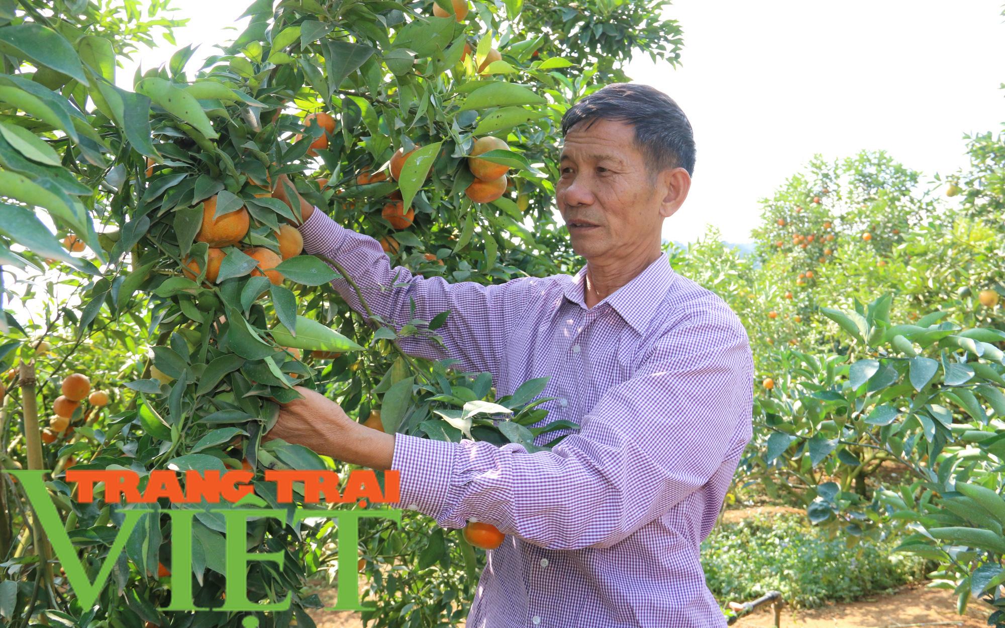 Sản xuất kinh doanh giỏi, phong trào giúp nông dân làm giàu