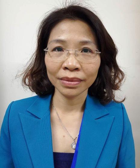 Bắt nguyên Phó Giám đốc Sở KHĐT Hà Nội liên quan vụ Nhật Cường - Ảnh 2.