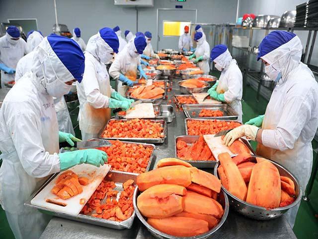 """Lối đi nào cho rau, quả Việt xuất khẩu tới """"trời"""" Âu? - Ảnh 2."""