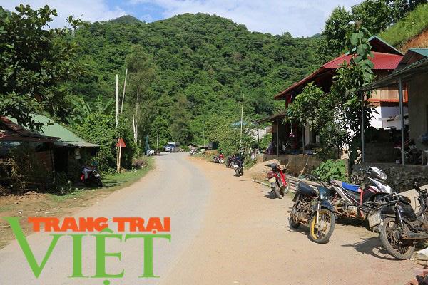 Mai Châu ưu tiên phát triển hạ tầng giao thông nông thôn   - Ảnh 3.