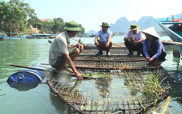 Đặc sản cá trắm nuôi lồng ở Phong Nha - Ảnh 1.