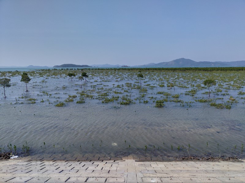Quảng Ninh: Hoàn thành thi công tuyến đê đảo Quan Lạn - Ảnh 2.