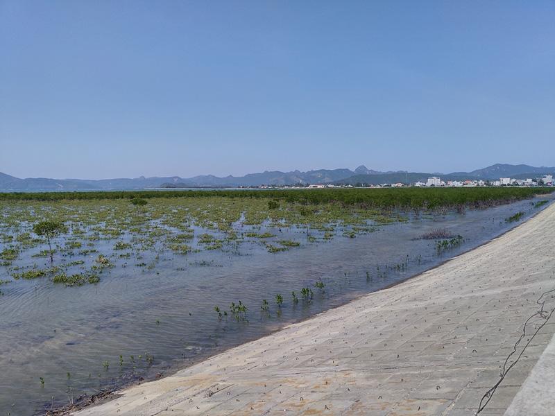 Quảng Ninh: Hoàn thành thi công tuyến đê đảo Quan Lạn - Ảnh 3.