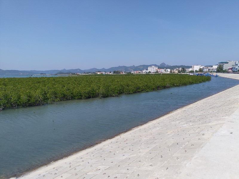 Quảng Ninh: Hoàn thành thi công tuyến đê đảo Quan Lạn - Ảnh 5.