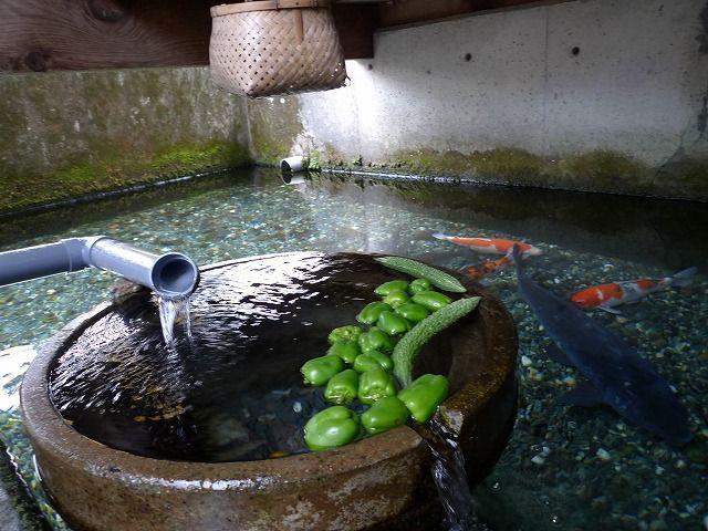 Ngôi làng có nước trong và sạch đến mức người dân rửa bát, vo gạo nấu cơm ngay ở kênh mương nuôi cá - Ảnh 3.