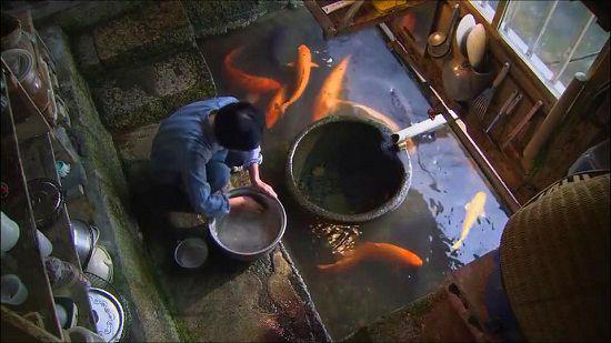 Ngôi làng có nước trong và sạch đến mức người dân rửa bát, vo gạo nấu cơm ngay ở kênh mương nuôi cá - Ảnh 4.