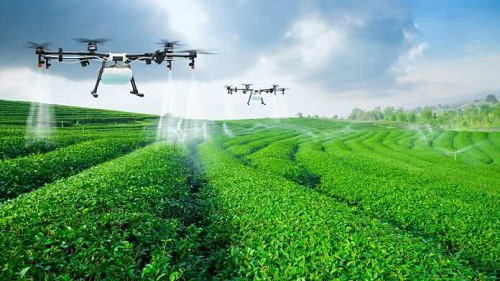 Gia nhập EVFTA: Nông dân phải là doanh nghiệp - Ảnh 3.