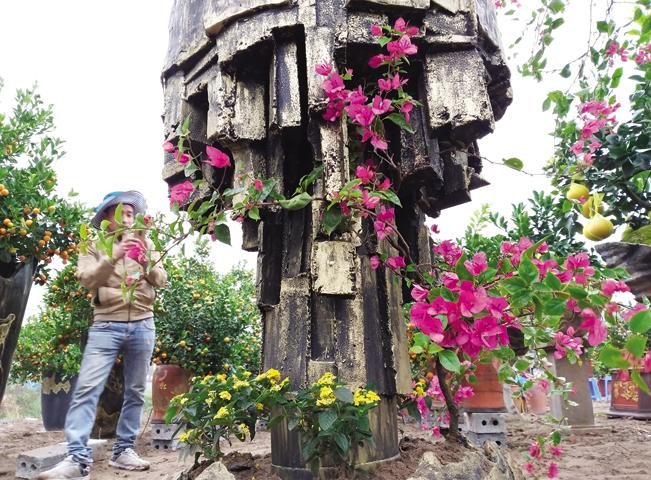 """Sản phẩm """"cây hoa hậu"""" được anh Hoàn thiết kế rất kỳ công và lạ mắt."""