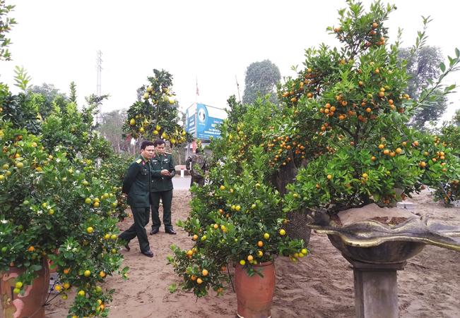 Đến nay sản phẩm của anh Hoàn đã nổi tiếng và được khách hàng khắp nơi biết đến, đặt hàng.