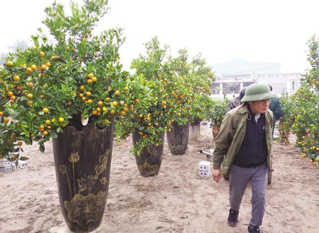 Các sản phẩm của anh Hoàn rất độc đáo và mới lạ.
