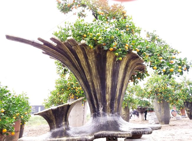 Một tác phẩm cây mang ý tưởng là các sinh vật của biển cả tại vườn của anh Hoàn.