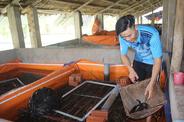 Chàng trai Ngô Chiến Thắng giới thiệu trại nuôi lươn không bùn cho thu nhập cao. Ảnh: B.Nguyên