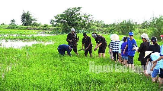 Du khách trải nghiệm nhổ cỏ lúa.