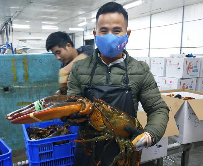 """""""Khách chủ yếu là các nhà hàng hải sản ở Hà Nội. Mỗi nhà hàng nhập từ hàng tạ một lần. Vì mỗi con tôm nặng trung bình khoảng 3-4kg nên 1 tạ cũng chỉ được khoảng 30 con. Nên họ thường nhập số lượng lớn để phục vụ thực khách"""", anh cho hay."""