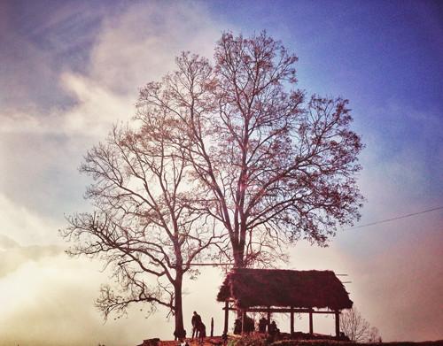 Công viên Choản Thèn- một trong những địa điểm check in nổi tiếng ở Y Tý.