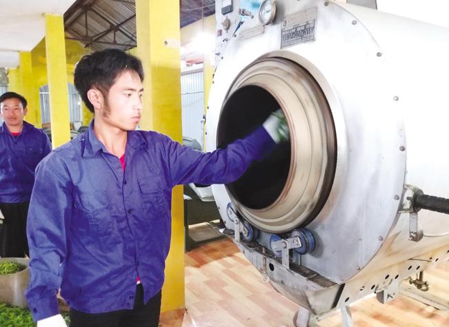 Đơn vị này mới áp dụng công nghệ sấy chè hiện đại vào chế biến giúp giảm nhân công, tăng giá trị sản phẩm.