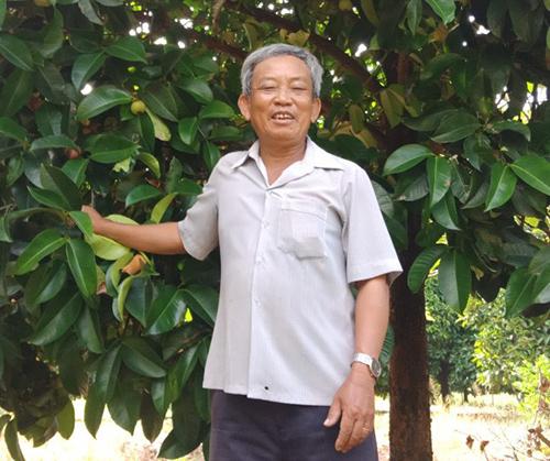Ông Nguyễn Văn Tỵ rất phấn khởi vì vụ măng cụt năm nay được mùa, được giá. Ảnh: Hồng Nga