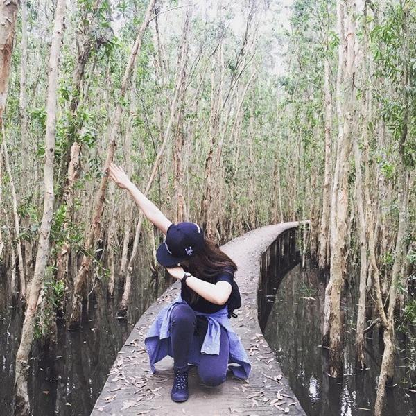 Đi xuyên rừng tràm sẽ mang đến bạn một trải nghiệm vô cùng mới lạ (Nguồn: Internet)