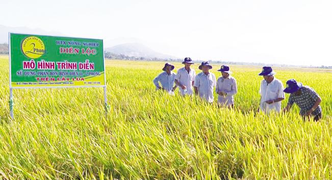 Người dân huyện Diên Khánh phát triển các mô hình sản xuất mới. Tư liệu
