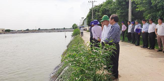 Các đại biểu thăm mô hình nuôi cá tra tại Long An.
