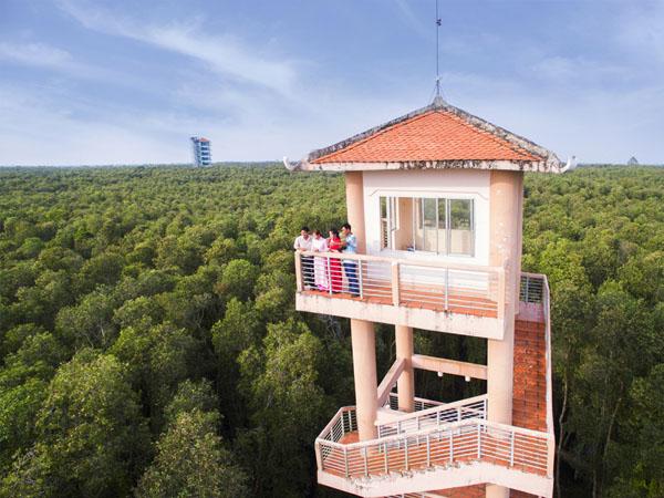 Đứng trên cao bạn có thể nhìn bao quát cánh rừng tràm và cả khu du lịch (Nguồn: Internet)