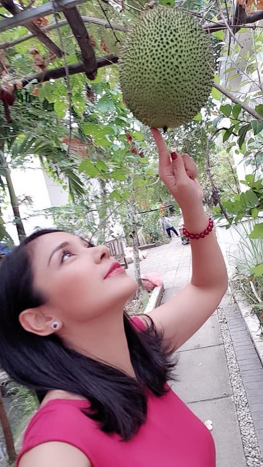 Việt Trinh cũng thường xuyên khoe những món ăn được chế biến từ chính những loại rau quả sạch mình thu được ngoài vườn.