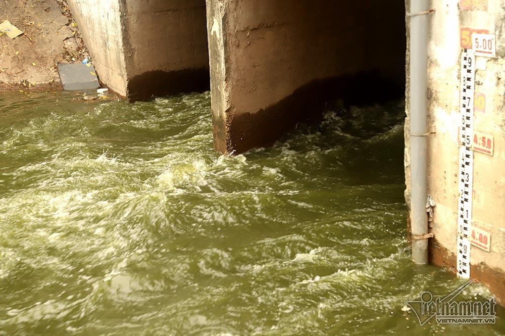 Mực nước chảy vào sông đến ngày 9/7 đạt gần 4m.