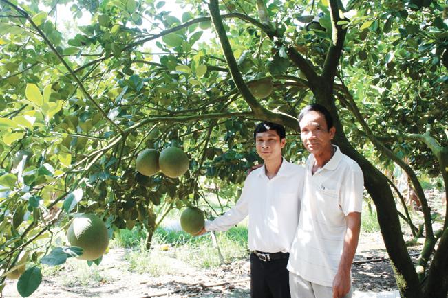 Ông Trần Văn Thiện (xã Khánh Phú, huyện Khánh Vĩnh, Khánh Hòa) đã biến vùng đất khô cằn thành vùng cây trái tươi tốt.