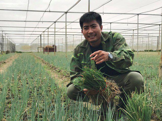 """Ngô Hữu Sáu đã từ bỏ lương mức """"khủng"""" ở công ty Nhật Bản để về quê xứ Thanh trồng rau sạch. (ảnh H. D)"""