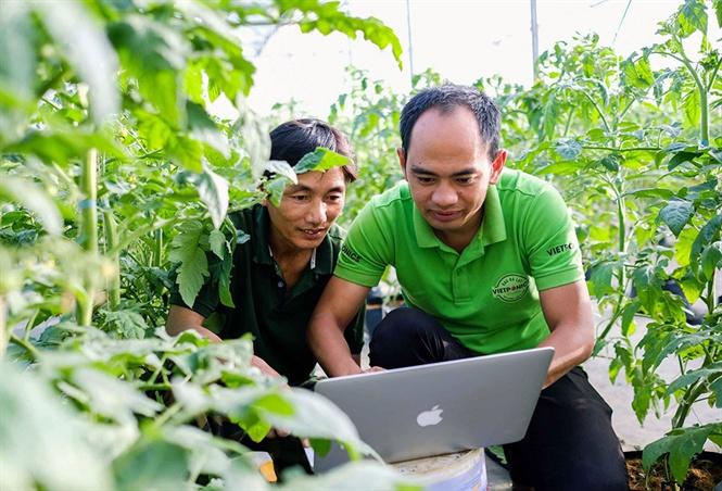 Nguyễn Đức Huy hướng dẫn khách xem hệ thống quản trị vườn qua máy tính.