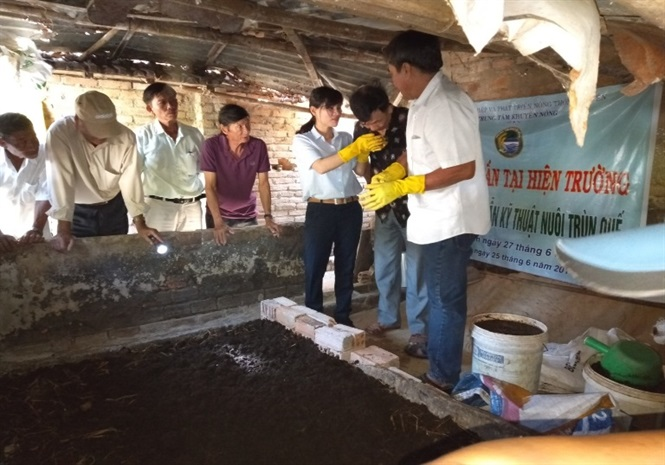 Học viên thực hành kỹ thuật nuôi trùn quế.