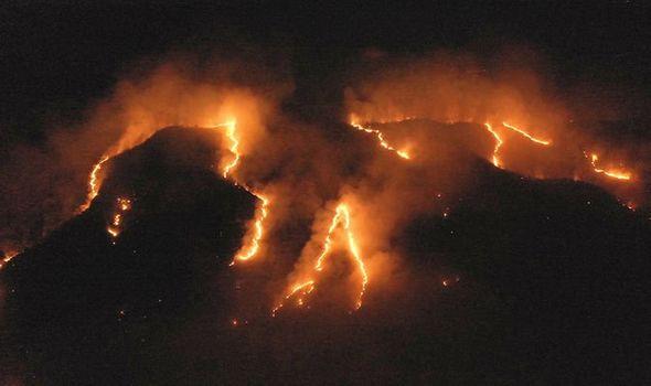 Rừng Amazon đang cháy với tỉ lệ cao nhất trong hơn 15 năm qua (Ảnh: Reuters)