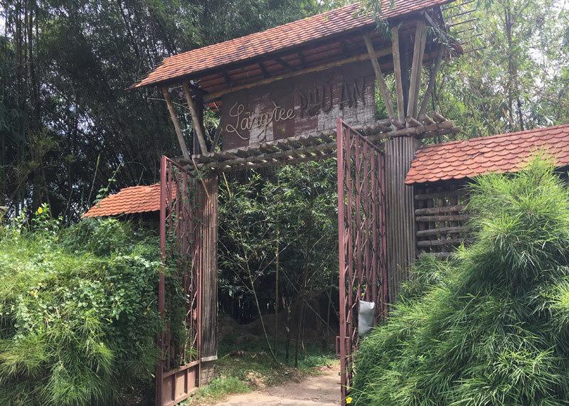 Cổng vào làng tre Phú An.