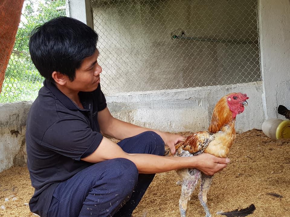 anh Nguyễn Hồng Chuyên, Giám đốc Hợp tác xã (HTX) Mường Mùn, xã Mường Mùn về khát khao đưa sản phẩm chăn nuôi của mình vào chuỗi giá trị liên kết