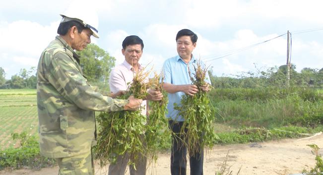 Ông Ngô Quang Chiến, Chủ tịch UBND huyện Cam Lộ (ngoài cùng bên phải) thăm, động viên nông dân sản xuất, góp phần xây dựng NTM.