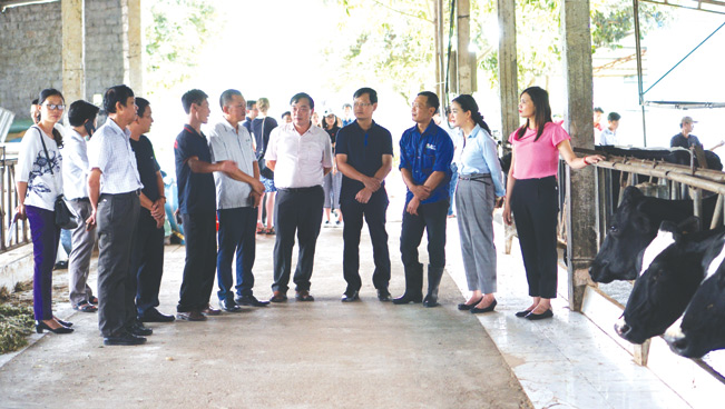 Các đại biểu tham quan mô hình tại tiểu khu 70, thị trấn Mộc Châu, tỉnh Sơn La.