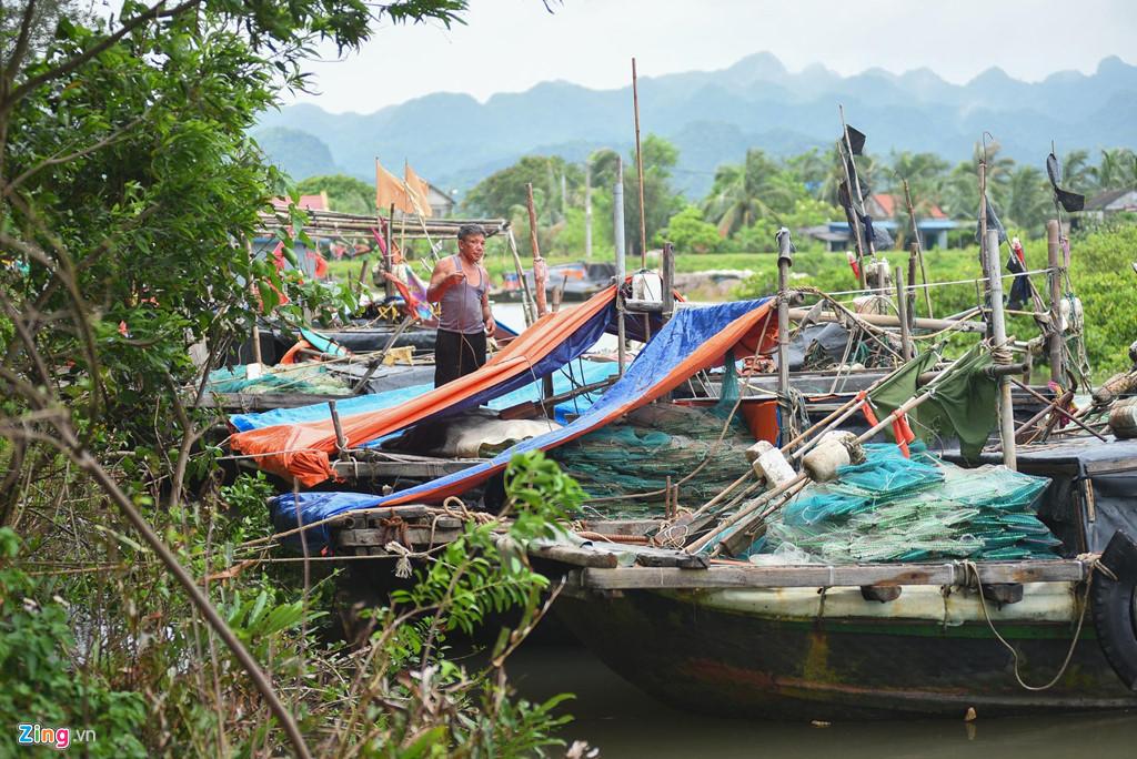 Cùng ngày, mọi ngư dân ở bến Phù Long đã đậu thuyền bè về bến, buộc thuyền bè vào những cọc gỗ chắc chắn ven bờ.