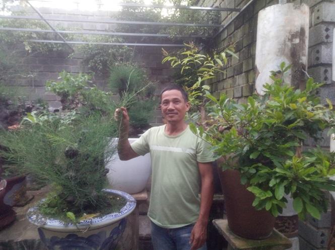 Đất sạch được anh Duy trồng cây cảnh tại nhà.