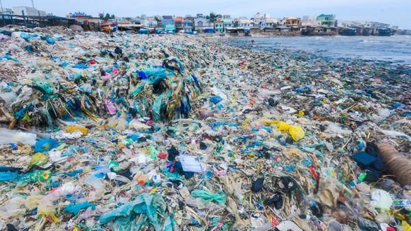 """Nghệ sĩ, hoa hậu làm đại sứ cuộc thi viết """"Nói không với rác thải nhựa"""" - Ảnh 1."""