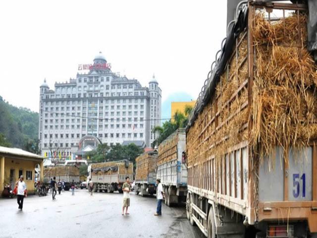 """Không thay đổi tư duy """"tiểu ngạch"""" nông sản Việt khó tiếp cận EVFTA - Ảnh 1."""