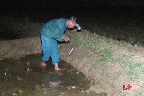 Chiếc bẫy được người dân tận dụng từ chai nhựa có thể bắt được từ 3-5 con cáy.