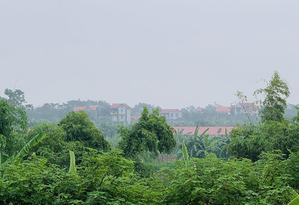 Đứng trên bờ đê nhìn về xã Vĩnh Thịnh, nhà cao tầng mọc lên san sát.