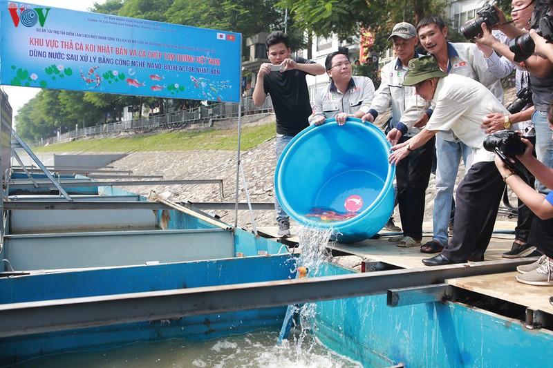 Các chuyên gia trong lĩnh vực môi trường thả 3 loại cá xuống khu vực xử lý nước.