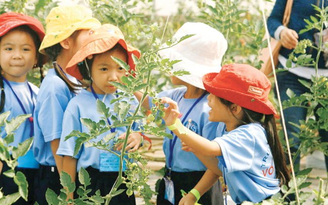 Huyện cũng đang thực hiện các chính sách thu hút đầu tư, phát triển du lịch sinh thái ven sông Sài Gòn, du lịch sinh thái gắn với nông nghiệp công nghệ cao, du lịch trải nghiệm hoặc khai thác tuyến du lịch đường sông.